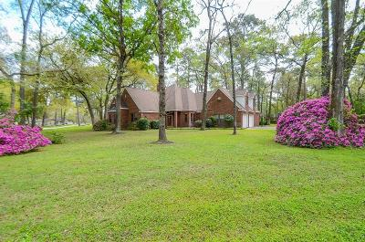 Tomball Single Family Home For Sale: 22802 Rosehollow Trail