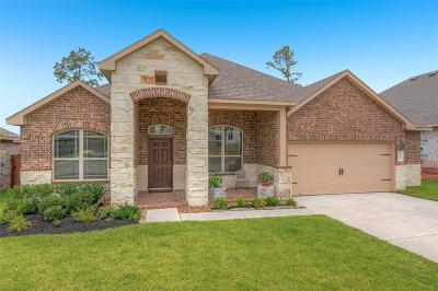 Conroe Single Family Home For Sale: 12239 Emerald Mist Lane