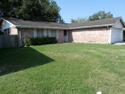 Friendswood Single Family Home For Sale: 4318 Saffron Lane