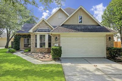 League City Single Family Home For Sale: 916 Elm Pointe