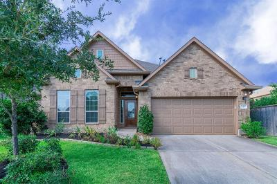 The Woodlands Single Family Home For Sale: 249 Hearthshire Circle