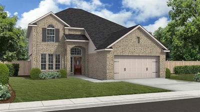 Missouri City Single Family Home For Sale: 3731 Altino Court