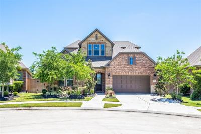 Katy Single Family Home For Sale: 26907 Raven Hill Lane