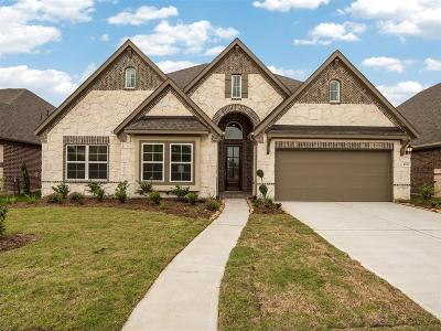Riverstone Single Family Home For Sale: 4510 Highland Field Lane