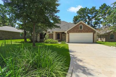 Montgomery Single Family Home For Sale: 12719 Brightwood Drive
