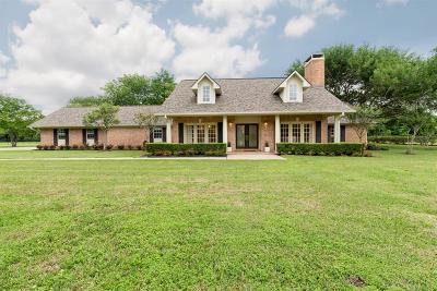 Fresno TX Single Family Home For Sale: $520,000