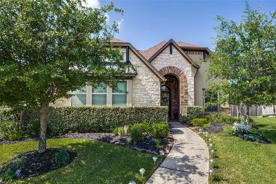 Humble Single Family Home For Sale: 17635 Bear River Lane