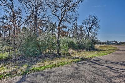 Fayette County Farm & Ranch For Sale: Sadie Lane