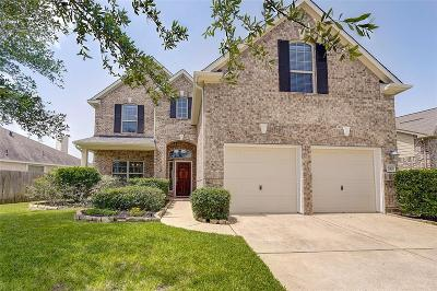 Houston Single Family Home For Sale: 17907 Windy Canyon Lane