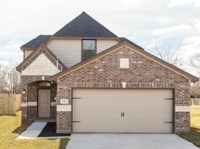 Dickinson Single Family Home For Sale: 2801 Ohio Street