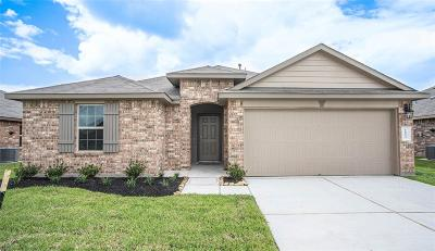 Rosenberg Single Family Home For Sale: 1822 Welsh Canyon Drive