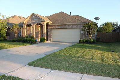 Galveston County Rental For Rent: 2504 Via Montesano