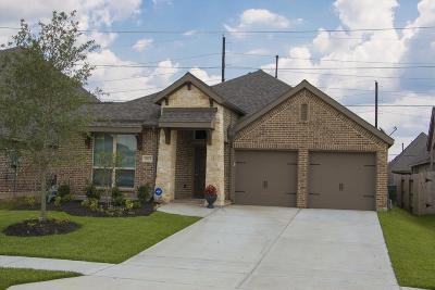 Pearland Rental For Rent: 2915 Parkstone Field Lane #71