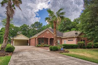 Porter Single Family Home For Sale: 19498 Balsas Drive