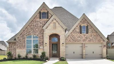 Manvel Single Family Home For Sale: 4331 Bluewood Court