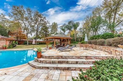 Houston Single Family Home For Sale: 4131 Grennoch Lane