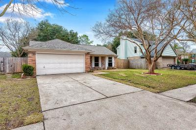 Pearland Single Family Home For Sale: 3904 Spring Garden Drive