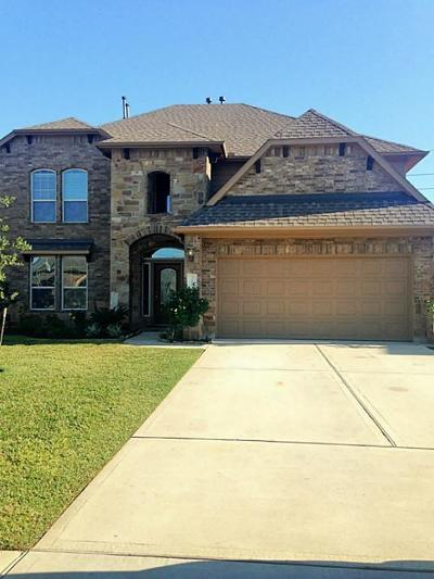Tomball Single Family Home For Sale: 10935 Gallant Flag Drive