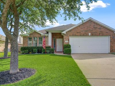 League City Single Family Home For Sale: 2220 Mangrove Bend Drive