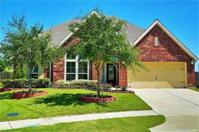 Pearland Single Family Home For Sale: 3001 Sunrise Run Lane
