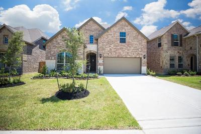 Spring Single Family Home For Sale: 20322 Little Costilla Way