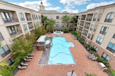 City Plaza At Town Square Condo/Townhouse For Sale: 2299 Lone Star Drive #418
