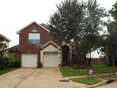 Houston Single Family Home For Sale: 16627 Barrett Post Lane