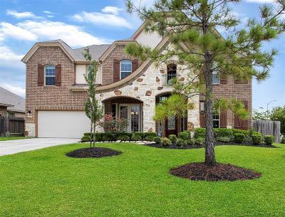 Galveston County, Harris County Single Family Home For Sale: 15819 Graham Spring Lane