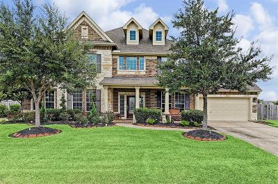 Friendswood Single Family Home For Sale: 2307 Lakeway Drive