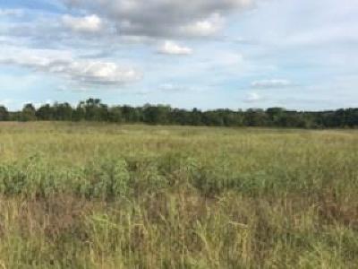 Austin County Farm & Ranch For Sale: 6260 Bleiblervill Road