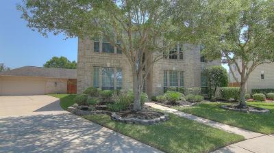 Pearland Single Family Home For Sale: 11601 Shoal Landing Street