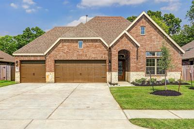 Pearland Single Family Home For Sale: 2803 Merlin Lane