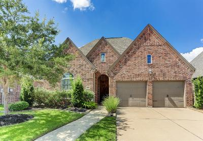 Missouri City Single Family Home For Sale: 7007 Covenant Way