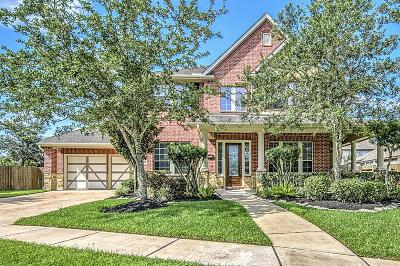 Friendswood Single Family Home For Sale: 221 Ranchwood Lane