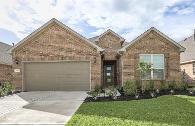 Rosenberg Single Family Home For Sale: 2342 Cherrington Woods Lane