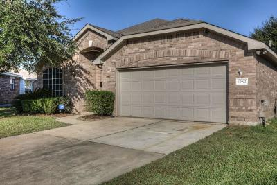 Tomball Single Family Home For Sale: 11902 Perdenales Falls Court