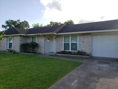 Houston Single Family Home For Sale: 12411 Buckland Lane