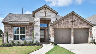 Manvel Single Family Home For Sale: 2027 Blackhawk Ridge Lane
