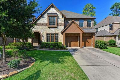 The Woodlands Single Family Home For Sale: 19 Blue Wildflower Place