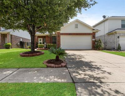Sugar Land Single Family Home For Sale: 16323 Goanna Court