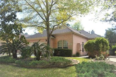 Single Family Home For Sale: 46 N Manorcliff Place