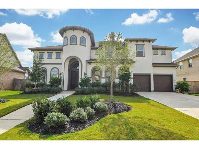 Katy Single Family Home For Sale: 2806 Hollingsworth Pine Lane