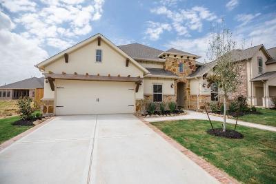 Katy Single Family Home For Sale: 6519 Elrington Heights Lane