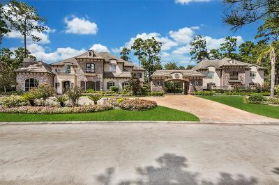 The Woodlands Single Family Home For Sale: 43 N Lamerie Way