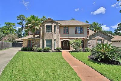 Houston Single Family Home For Sale: 12126 Laneview Drive