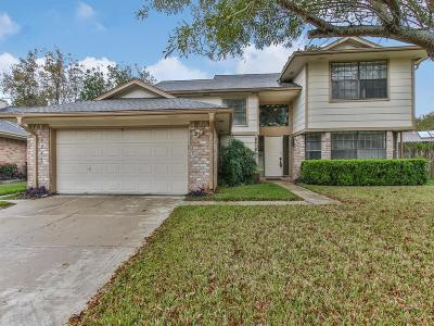 Sugar Land Single Family Home For Sale: 2218 Brook View Lane
