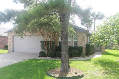 Spring Single Family Home For Sale: 3166 Rendezvous Court