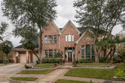 Houston Single Family Home For Sale: 15511 Bay Cove Court