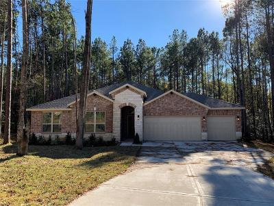 Conroe Single Family Home For Sale: 11247 Quiet Lake Drive