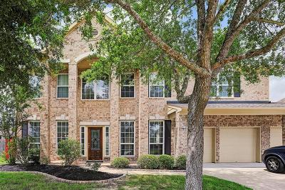 Pearland Single Family Home For Sale: 3203 Wonard Drive